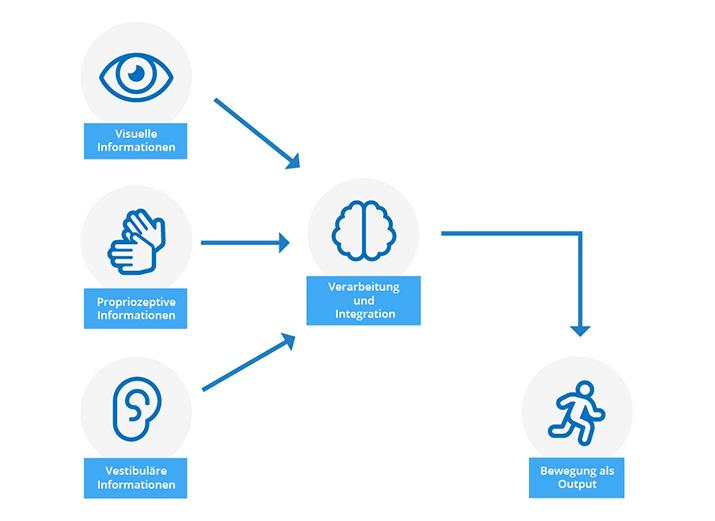 Was ist neurozentriertes Training