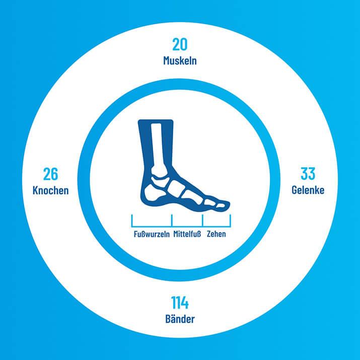 Warum gesunde Füße (nicht nur) im Laufsport entscheidend sind