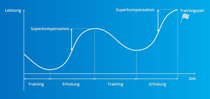 Das Prinzip der Leistungssteigerung: Superkompensation