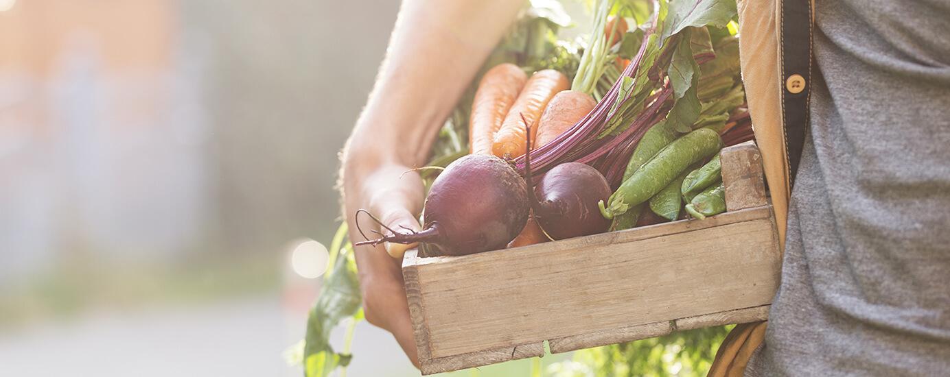 Folsäure, Vitamin B12 & Co: Wann brauchen wir welche Mikronährstoffe?